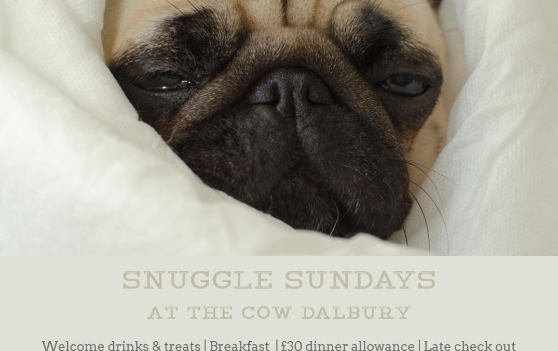 Snuggle Sundays – Spring Edition | Beginning 7th April 2019