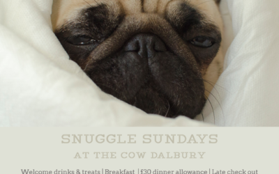 Snuggle Sundays – Spring Edition | Beginning 7th April 2019