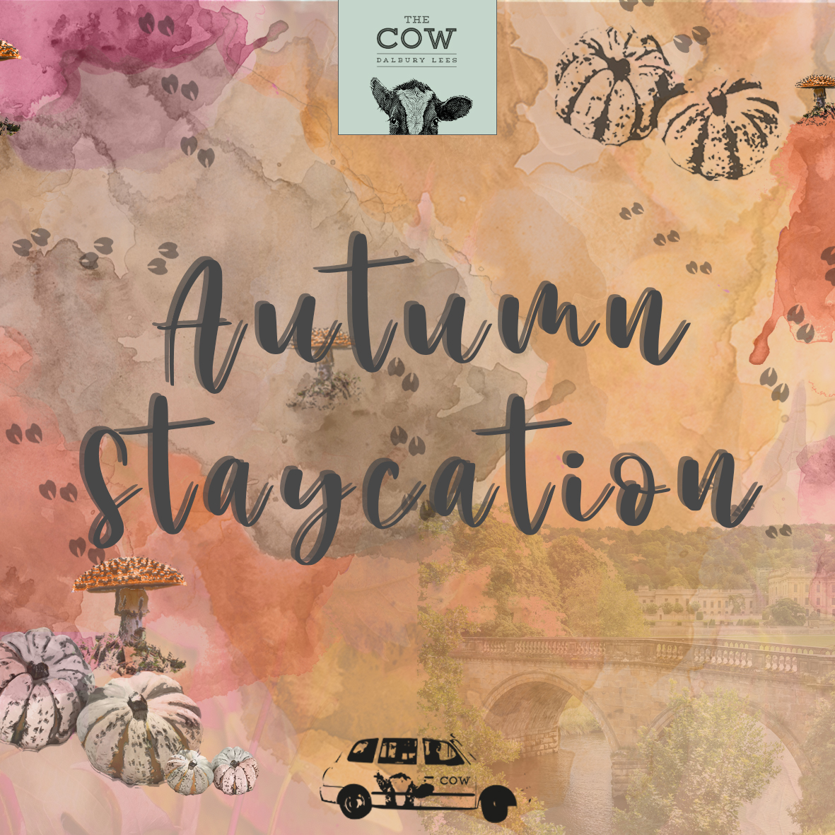 COW Autumn Staycation Website Image